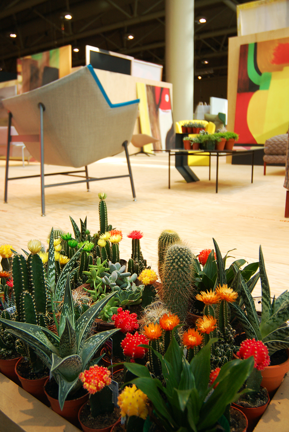 succulents and cacti in the foreground with furniture and paintings in the background